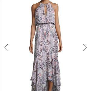 Parker Francesca Printed Maxi Dress Size Small